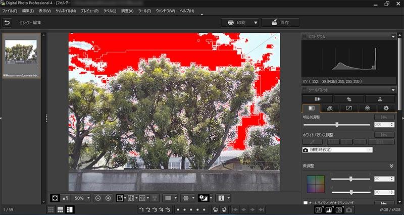 AQUOS sense2のスマホカメラで撮影した白飛び写真をDPP4のヒストグラムで解析